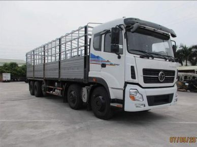 clk_truonggiang-21805t